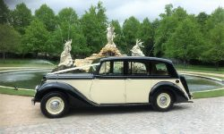 1951 Armastrong Siddleley long bodied Limousine in Black and Ivory 4