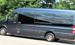 12 passenger Mercedes Excutive Party Bus 2