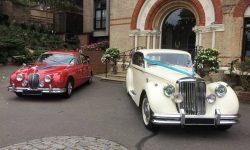 1964 Red MK II Jaguar and 1950 MK V Jaguar in Ivory