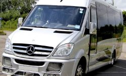 16 passenger Party Bus Silver W1