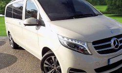 7 passenger Luxury V Class Mercedes in cream